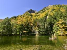 紅葉上高地10月下旬、明神池二之池 (1)