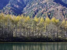 紅葉上高地10月下旬、大正池 (2)