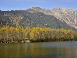 紅葉上高地10月下旬、大正池 (1)