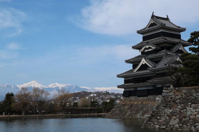 松本城の梅がほころび始めました♪